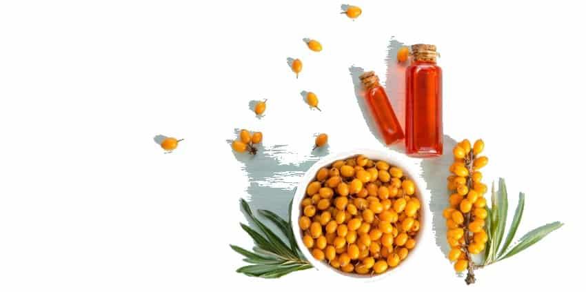 aceite de espino amarillo beneficios