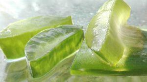 gel de aloe vera cosmetica natural